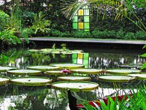 garden in Penang